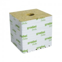 Grodan Cube LDR 100X100X65 mm Trous 40/35 mm