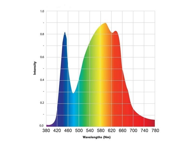 spectre602gh